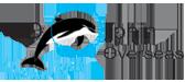 dolphin-overseas-logo